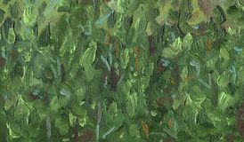 Oil Painting on canvas. Abstract texture of Pine forest. Oil Painting on canvas. Rough texture of large brush strokes. Abstract texture of Pine forest in the Stock Images