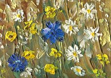 Oil painting on canvas. Cornflowers, chamomile and buttercup. Oil painting on canvas. Meadow flowers on an oat field on a sunny summer day. Cornflowers Stock Image