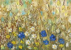 Oil painting on canvas. Cornflowers, chamomile and buttercup. Oil painting on canvas. Meadow flowers on an oat field on a sunny summer day. Cornflowers Stock Images
