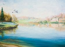 Quiet lake with swans. Oil painting on canvas. Quiet lake with swans Royalty Free Stock Images