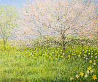 Springtime Impression. An oil painting on canvas of a springtime natural landscape with blooming trees and colorful meadow full of daffodils Royalty Free Stock Photo