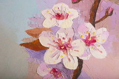 Oil painting Cherry Blossom Flowers Royalty Free Stock Photos