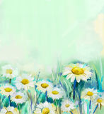 Oil painting daisy flowers in field Stock Image