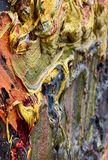 Oil painting in details with saturated colors. This photo was shooted in Leopold Museum in Vienna and describe in details one of oil artworks royalty free illustration
