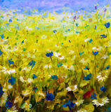 Oil painting of flowers,beautiful field flowers on canvas. Original oil painting of flowers,beautiful field flowers on canvas. Modern Impressionism.Impasto Stock Photography