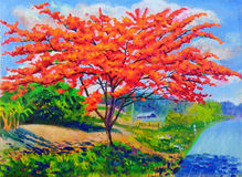 Oil painting flowers landscape original colorful of peacock flower tree Stock Images