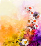 Oil painting flowers mix Watercolor techniques in background Royalty Free Stock Images