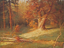 Oil painting - forest Stock Images