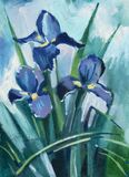 Oil painting iris flowers Royalty Free Stock Image