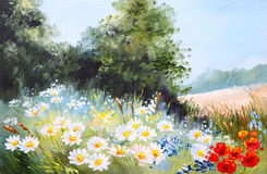 Oil painting landscape - meadow of daisies Royalty Free Stock Images