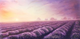 Oil painting of lavender fields on canvas.Sunset landscape Stock Photo