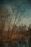 Oil Painting Like Image Of Barren Trees Stock Photography