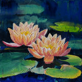 Oil painting - lotus flower, abstract drawing, impressionism Stock Image
