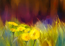 Oil painting nature grass flowers-yellow dandelions. Oil painting nature grass flowers. Hand paint close up yellow dandelions, pastel floral and shallow depth of Royalty Free Stock Photography