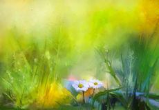 Oil painting nature green grass flowers plants. Hand paint white daisy, pastel floral and shallow depth of field. Blurred white flowers plants nature Royalty Free Stock Photo