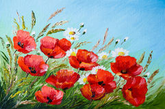 Oil painting - poppies in the field. Flowers, spring Stock Image