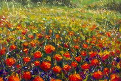 Oil painting of a poppy field. Summer flowers red field. Modern art - impressionism, texture Stock Photos