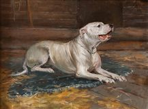 Oil painting portrait of hunting white dog in the shed. Art concept. The dog is waiting for its owner. Emotional Painting Animalism Stock Images