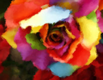 Oil painting rainbow rose Stock Photos