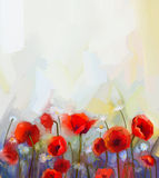 Oil painting red poppy flowers. Royalty Free Stock Photography