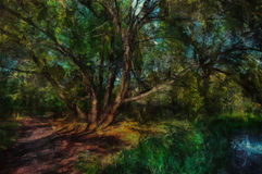 Oil painting. In the shade of a tree. Oil painting. The Sun in the shade of a tree Royalty Free Stock Images