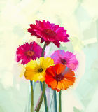 Oil painting  Still life of yellow and red gerbera flower Royalty Free Stock Photography