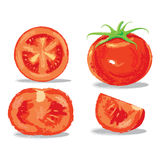 Oil painting tomato Stock Photo