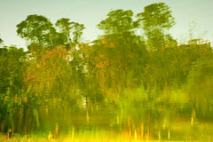 Oil painting: trees royalty free stock photography