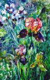 Oil painting. Рurple, yellow and white irises in the garden Stock Images