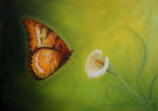 Oil painting of a vibrant butterfly about to land on a Cala flower petal Stock Photo