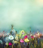 Oil painting Wildflowers field in summer meadow. Oil painting  flowers dandelion, poppy, daisy in fields. Hand Paint Wildflowers field in summer meadow. Spring Stock Images