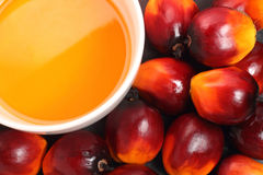 Oil palm fruit and cooking oil Royalty Free Stock Image