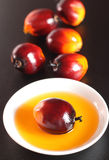 Oil palm fruit and cooking oil Royalty Free Stock Images