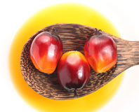 Oil palm fruit and cooking oil Royalty Free Stock Photo