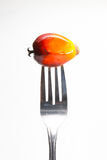 Oil palm fruit on fork Royalty Free Stock Photo