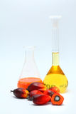 Oil palm fruits with palm oil Stock Photos