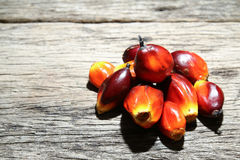 Oil palm fruits - Series 3 Stock Photography