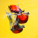 Oil Palm Fruits splash Stock Photo