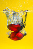 Oil Palm Fruits splash Stock Image