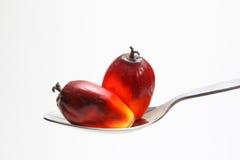 Oil palm fruits on spoon - Series 3 Stock Photos