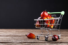 Oil palm seeds in trolley - Series 2 stock images