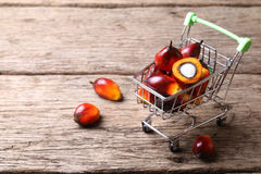 Oil palm seeds in trolley - Series 4 royalty free stock images