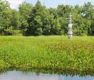 Oil Pipeline Valve in Marsh. An oil pipeline valve protruding from the green vegetation of a Louisiana marshland Royalty Free Stock Image