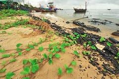 Oil polution on the beach Royalty Free Stock Photos