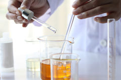 Oil pouring, Equipment and science experiments, Formulating the chemical for medicine. Organic pharmaceutical, Alternative medicine concept. Selective Focus stock photos