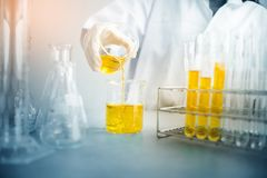 Oil pouring, Formulating the chemical for medicine,Laboratory research, dropping liquid to test tube. Professional distinguished Science specialist at work.Young Royalty Free Stock Photo