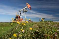 Oil pump in field. Oil pump in summer field royalty free stock image
