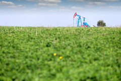 Oil pump jack on field. Oil pump jack on green field Stock Photo