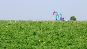Oil pump jack on field stock video footage