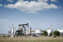 Oil pump jack and refinery Royalty Free Stock Photography